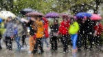 People brace for a stint of rainfall in Toronto. (Markus Schreiber/AP Photo)