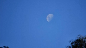 It's not that uncommon to see the moon high in the sky during the day!