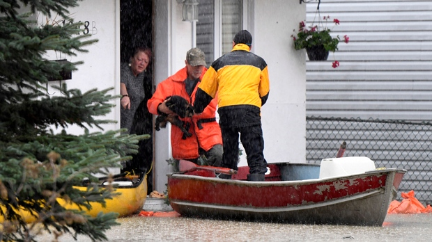 Crews use a boat to rescue a cat from a home on Rue Saint-Louis in Gatineau, Que., as rising river levels and heavy rains continue to cause flooding, on Saturday, May 6, 2017. THE CANADIAN PRESS/Justin Tang