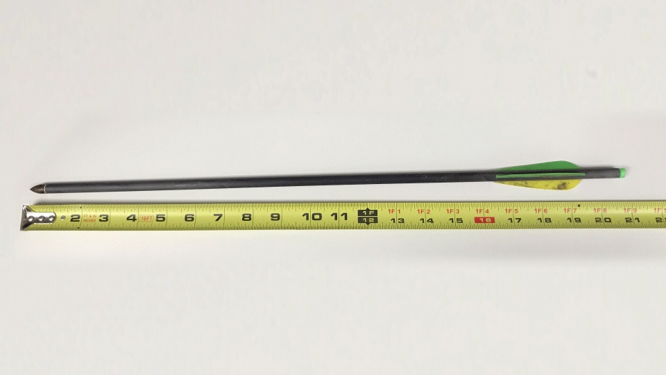 The arrow that hit the animal was nearly half a metre in length. (Photo: Handout)