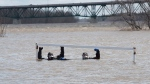 Scuba divers Ed Monat, left, and Joe George surface at a soccer net on a soccer field flooded by the waters from the St. John River in Fredericton, N.B., on Sunday, May 7, 2017.  (THE CANADIAN PRESS/Stephen MacGillivray)