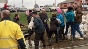 flooding, volunteers, sandbags