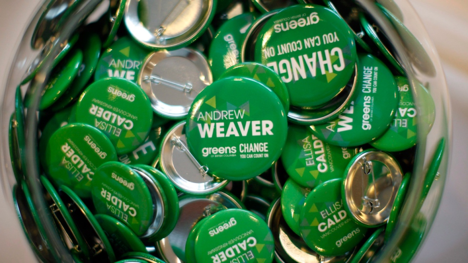 B.C. Green Party pins in a fishbowl at the Delta Ocean Pointe in Victoria, B.C., on May 9, 2017. (Chad Hipolito / THE CANADIAN PRESS)