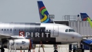 A Spirit Airlines airplane at Fort Lauderdale-Hollywood International Airport in Fort Lauderdale, Fla., on June 13, 2010. (Lynne Sladky / AP)