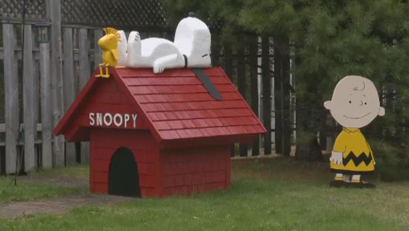 The McCarrons' life-sized collection of handmade Peanuts cartoon characters continues to grow each year, as does the number of people who visit their Chester, N.S. home to get a glimpse of Charlie Brown and the gang.