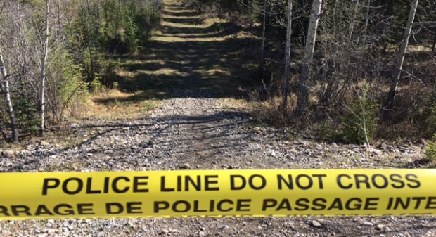 Human remains found in remote area near Redwood Meadows - CTV News