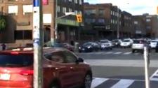 car, roncesvalles, traffic light