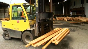 Lumber prices which ran up in anticipation of export duties have begun to soften in part due to the lowering of duties.