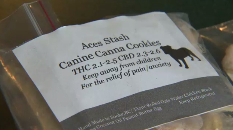 Castle Naturals, a marijuana dispensary in Sooke, has been selling biscuits containing cannabis for the last year. May 16, 2017. (CTV Vancouver Island)