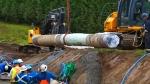 Alberta given intervenor status
