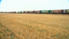 grain trains