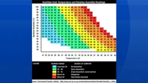Here is the EC Humidex Chart. All you need is air temperature and relative humidity to find out how warm it feels!
