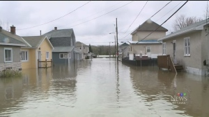 Homeowners across the region were concerned about more flooding with the rain expected this week, but experts say it's unlikely to happen. (FILE)
