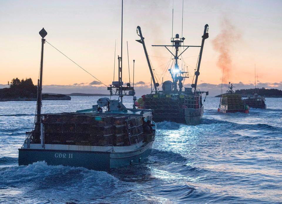 Canada-European Union pact worries U.S. lobster industry   CTV News