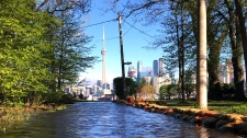Toronto Island flooding, Tory tours flood zones