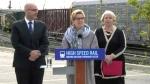 Extended: Toronto-Windsor transit initiative