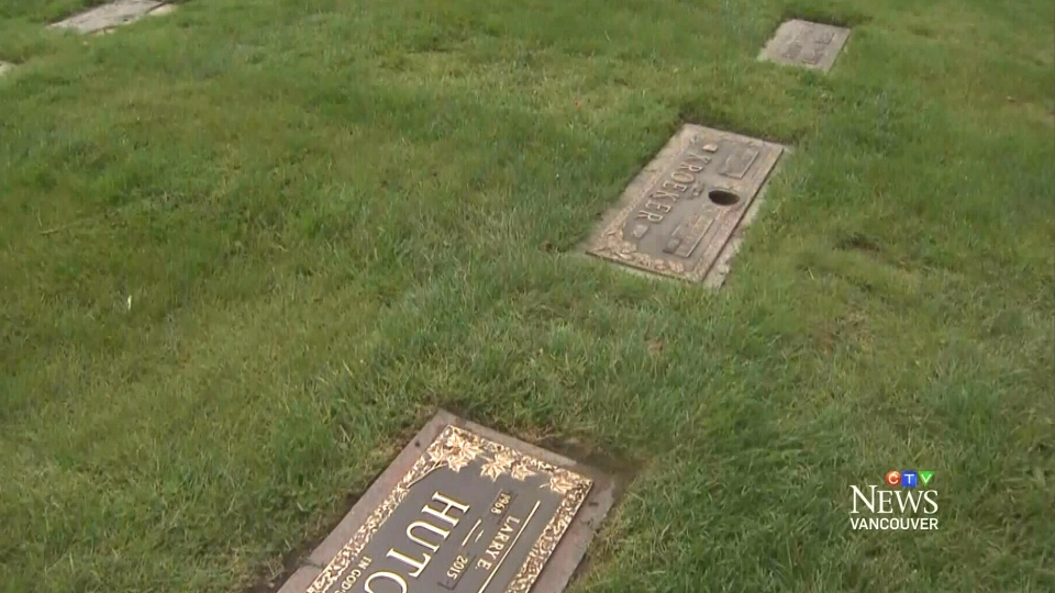 Police are looking for suspects who stole about 175 ornamental flower vases from a cemetery in Surrey, B.C.