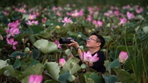 In this photograph taken on May 5, 2017, a tourist takes a photograph of lotus flowers while riding in a canoe through a lake in the Khao Sam Roi Yot national park in southern Thailand.  Roberto SCHMIDT / AFP