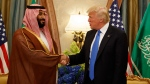 President Donald Trump shakes hands with Saudi Deputy Crown Prince and Defense Minister Mohammed bin Salman during a bilateral meeting, Saturday, May 20, 2017, in Riyadh. (AP Photo / Evan Vucci)