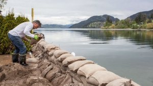 Malcolm Uttley places sandbags along a small canal between Kalamalka Lake and Wood Lake at the Tween Lake Resort in Oyama B.C. just north of the City of Kelowna on Friday, May 12, 2017. THE CANADIAN PRESS/Jeff Bassett