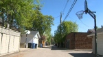 Alleyway in Elbow Park