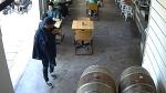 alleged purse snatcher at west-end bar