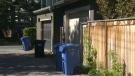 Elbow Drive alleyway - sex assault