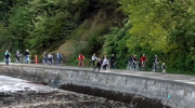 The older and more experienced cyclists appear to be incredibly patient on the Vancouver seawall in Stanley Park.