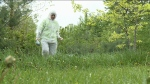 CTV Ottawa: Ottawa an 'at risk' area for Lyme Dis