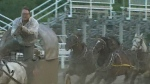 CTV Montreal: Rodeo legal challenge