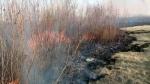 Number of wildfires below average in Sask.