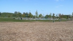 The wood chips and playground in Kitchener's McLennan Park. (CTV Kitchener)