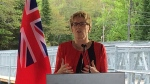 Premier Kathleen Wynne announced the province is covering 90 per cent of the cost of the replacement of the Stephenson Road 1 bridge in Muskoka. (CTV Barrie)