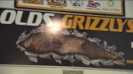 Olds Grizzlys banner