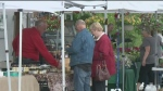 CTV Barrie: Market opening