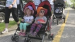CTV Barrie: Charity Walks