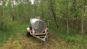 A couple in the RM of Springfield said two pet goats were killed by a bear. It happened earlier this month on a property on Springfield Road near Anola. Two culvert traps have been set up in the area. (Photo: Beth Macdonell/CTV Winnipeg)