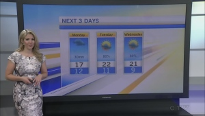 CTV MOrning Live Weather May 29