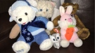 Five stuffed animals were found after Sunday's Teddy Bears' Picnic came to a close at Assiniboine Park. (Photo: Children's Hospital Foundation of Manitoba)