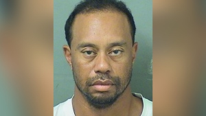 Tiger Woods is seen in a police booking photo. (source: Palm beach County Sheriff's Office)