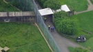 Extended: Aerial view of zoo after fatal accident