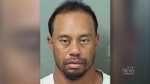 tiger woods, dui