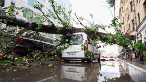 Vehicles struck by a fallen tree following a storm, in a residential area of Moscow, Russia, on  May 29, 2017. (Sergey Vedyashkin/Moscow News Agency photo via AP)