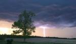 A bright lightning bolt strikes the tree lined horizon in Newington, Ont. (Krista Cummings/CTV Viewer)