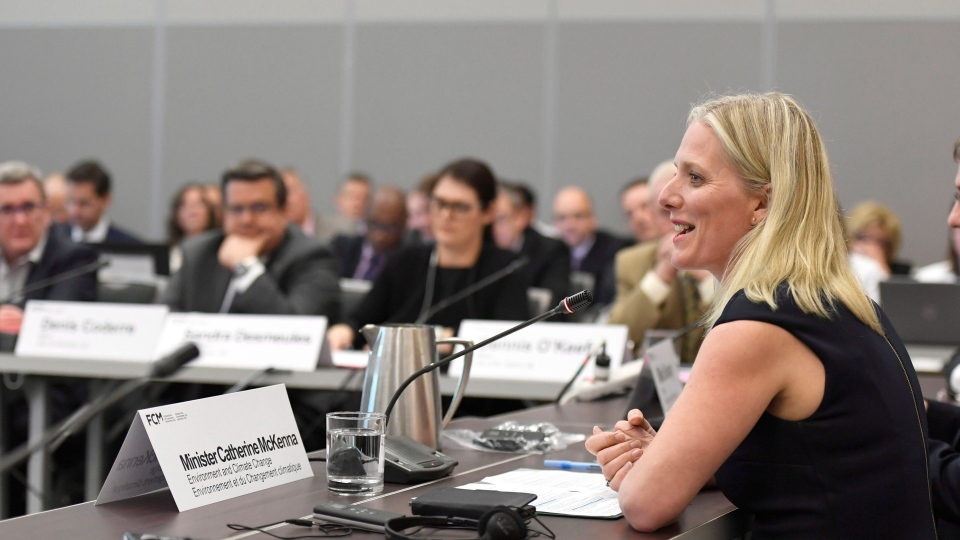 Federal Environment Minister Catherine McKenna speaks during Big City Mayors' Caucus on Thursday, June 1, 2017. (Justin Tang / THE CANADIAN PRESS)