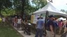 Art in the Park in Windsor, Ont., on Saturday, June 3, 2017. (Alana Hadadean / CTV Windsor)