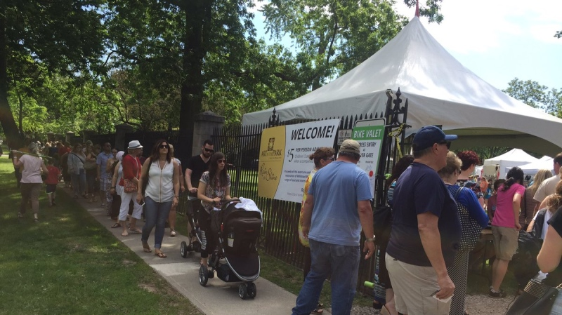 Art in the Park in Windsor, Ont., on Saturday, June 3, 2017. (Alana Hadadean / CTV Windsor)