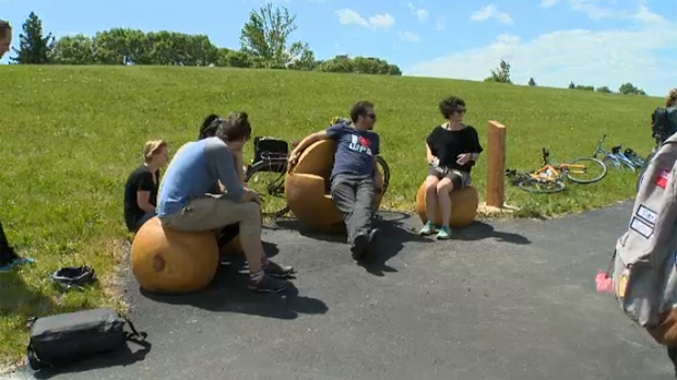 New public benches were unveiled along Bishop Grandin Trail as part of International Trails Day on Saturday.