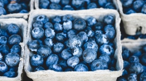 Heat wave hit farms hard but producers say blueberry, strawberry prices stable | CTV News