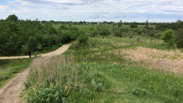 The Trans Canada Trail, now called The Great Trail, began as a dream in 1992. Manitoba is the seventh province or territory in Canada to have a connected path. (Source: Beth Macdonell/CTV Winnipeg)